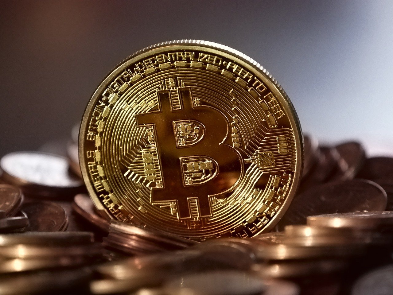 bitcoin in diretta applicazione di trading una moneta di btc