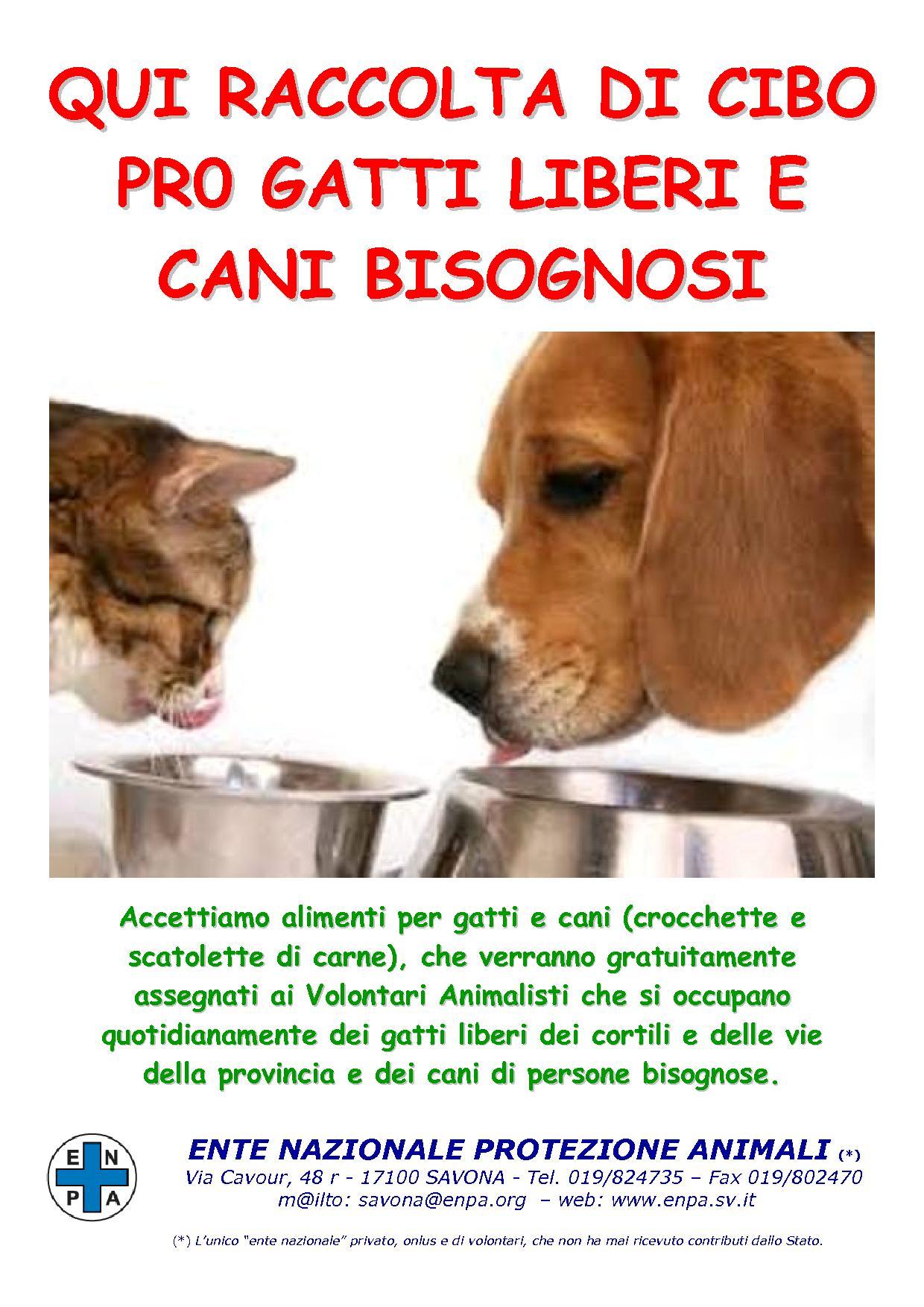 A Pietra Ligure raccolta cibo per cani e gatti al Carrefour ... f9d832000368