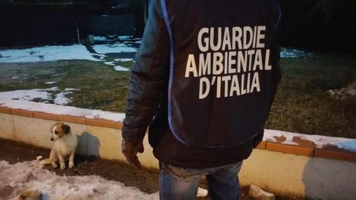 1° Corso di formazione GADIT per guardia ecozoofila della delegazione di Savona