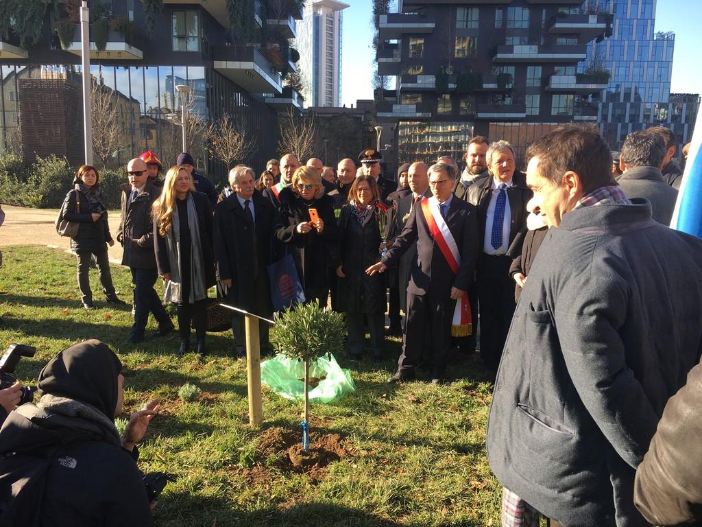 Milano, piantato un piccolo ulivo per la pace