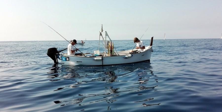 """Pesca, Viviani (Lega) presenta due interrogazioni alla camera dei deputati: """"Su fermo biologico e quote tonno rosso necessario intervento del ministero"""""""