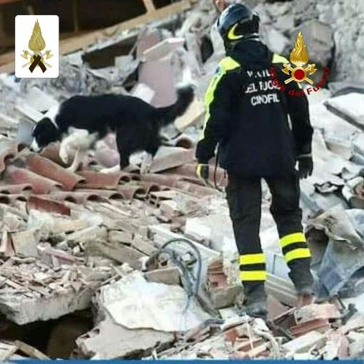 """Camilla, il cane eroe dei Vigili del Fuoco di Savona ricordata con il Premio """"Fedeltà del cane"""""""