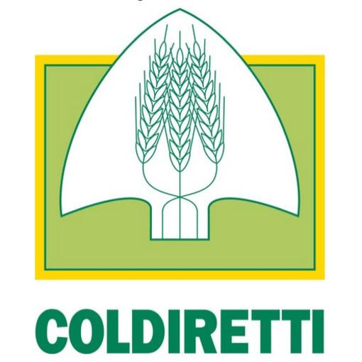 """Coldiretti Savona festeggia nelle scuole di Calice la """"Giornata dell'Albero"""""""