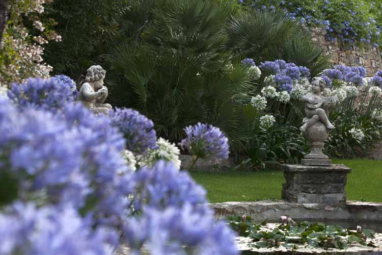 Alassio a villa della pergola tra i fiori dell 39 amore - Giardini di marzo collezione ...