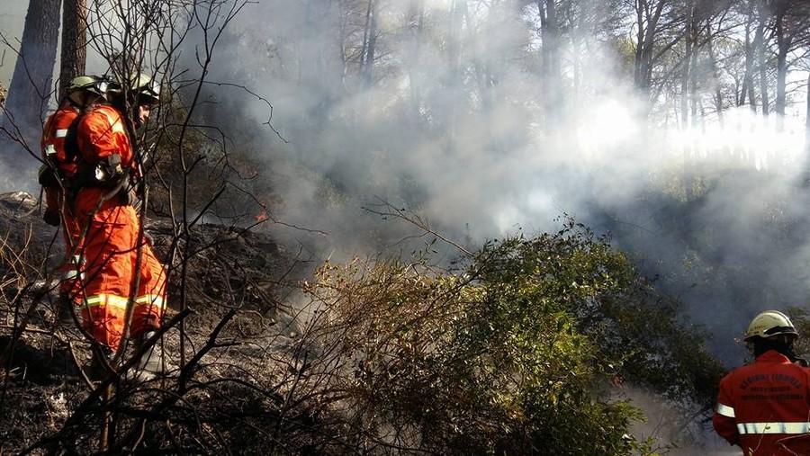 Stellanello, l'incendio di Bossaneto si può ritenere tecnicamente spento