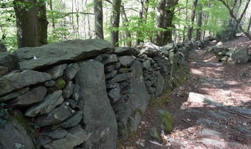 Varazze, domenica 17 ottobre visita straordinaria agli scavi archeologici di Alpicella