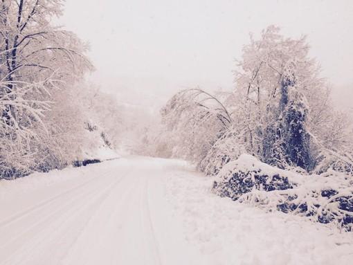 """Nuova ondata di maltempo in arrivo, il sindaco di Bardineto: """"La neve è nel nostro DNA, ma oggi la vediamo come una calamità"""""""