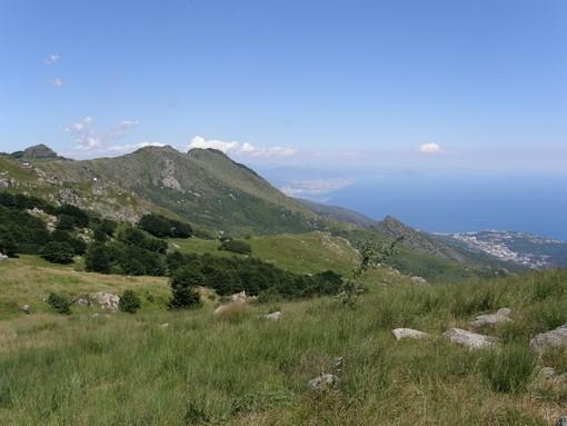 """Federparchi Liguria al ministro Cingolani: """"Integrare i parchi regionali nel sistema nazionale"""""""