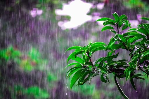 Meteo, settimana con qualche pioggia: temperature primaverili