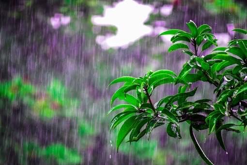 Maltempo in Val Bormida: caduti 72mm di pioggia nell'ultima ora a Montenotte Inferiore