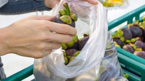 Sacchetti biodegradabili a pagamento nei supermercati: il Codacons avvia un'iniziativa per denunciare i responsabili