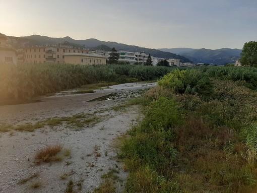 Albisola, pulizia del torrente Sansobbia: ordinanza del sindaco