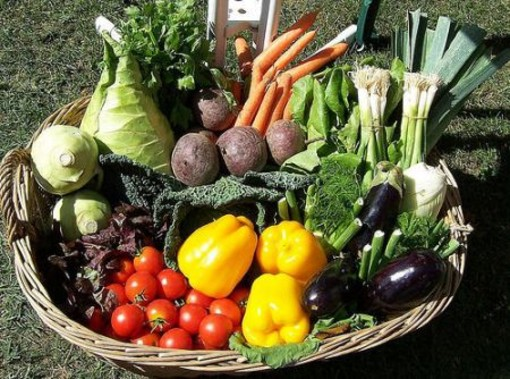 Segno positivo per l'agroalimentare Made in Italy: in Italia e all'estero sempre più ricercate le eccellenze territoriali