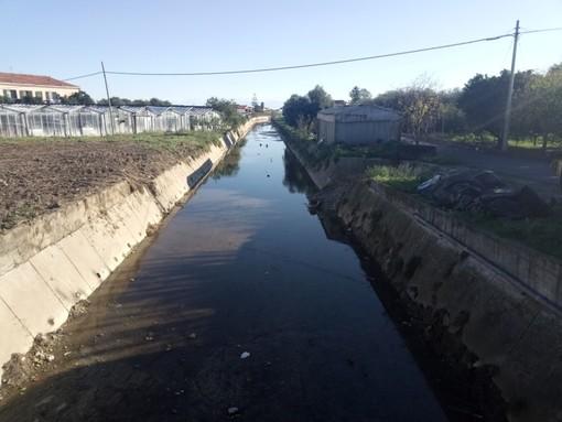 Albenga, terminata la pulizia del rio Antognano (FOTO)