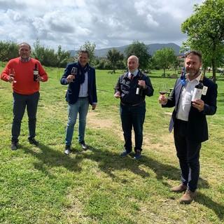 Tra costa ed entroterra, il vicepresidente regionale Piana nel savonese per parlare di vitivinicoltra