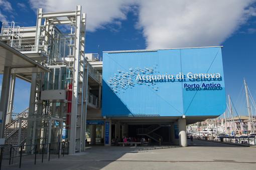 L'Acquario di Genova nuovo partner del programma Millemiglia di Alitalia
