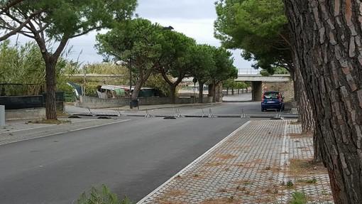 Alberi caduti e insegne pericolanti, giornata di interventi per i Vigili del Fuoco in Provincia di Savona