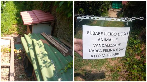 Savona, vandalizzata la colonia felina in zona Ammiraglie: la denuncia di Accademia Kronos