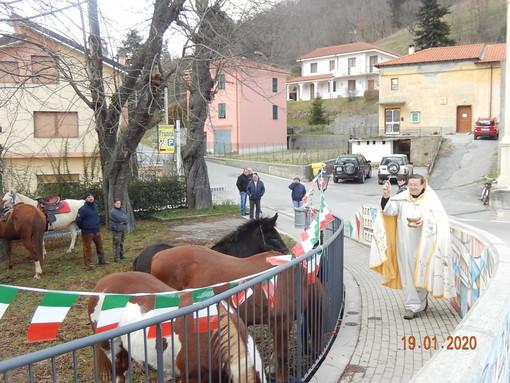 A Pallare la benedizione degli animali per la festa di Sant'Antonio (FOTO)