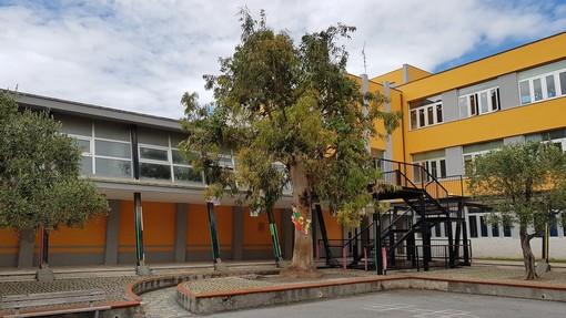 """Loano, nel cortile delle scuole Valerga c'è un """"Albero della legalità"""""""