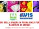 Accordo Avis - Coldiretti Liguria: i fiori della riviera in prima linea per la raccolta di sangue
