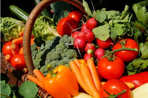 4 dicembre - La salute nel piatto