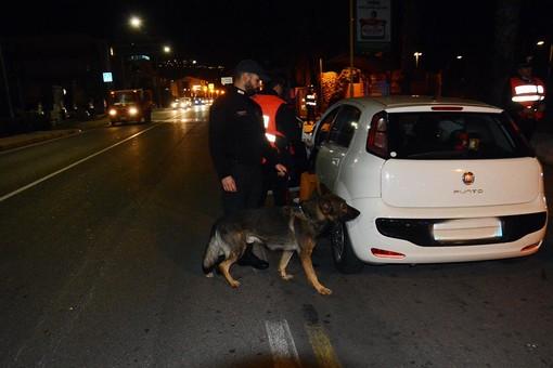 Controlli dei carabinieri della Compagnia di Albenga: un arresto, dodici denunce e sette perquisizioni