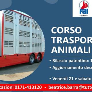 """Iscriviti al corso """"Conducenti trasporto animali vivi"""""""