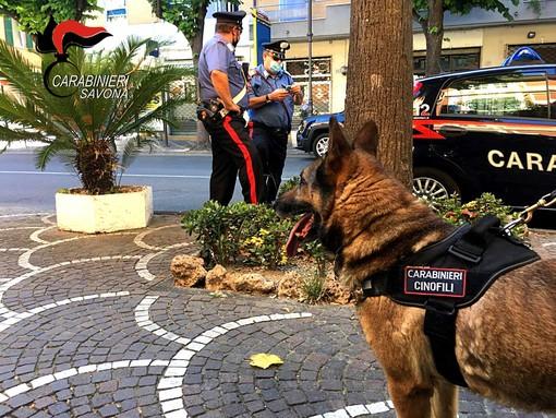 Albenga, controllo del territorio dei carabinieri: un arresto, due stranieri denunciati e numerosi consumatori di droga segnalati