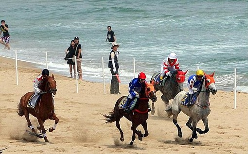 Animalisti e Enpa contro il Polo Beach di Pietra Ligure