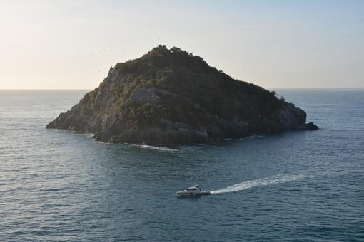 Capitaneria di Porto di Savona: prosegue l'intensa attività di controllo in mare e lungo le coste