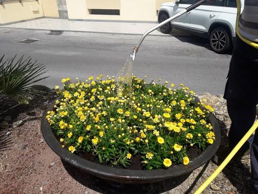 Come cambia il verde pubblico da Diano Marina a Bergeggi?
