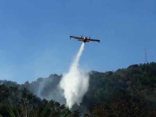 In fiamme i boschi di Orco Feglino: i mezzi aerei e le squadre da terra continuano le operazioni di spegnimento