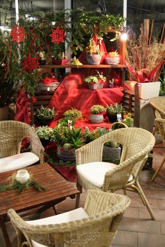 Una cena di Natale decisamente originale a Cisano sul Neva per la Delegazione e il Gruppo FAI Giovani Albenga-Alassio