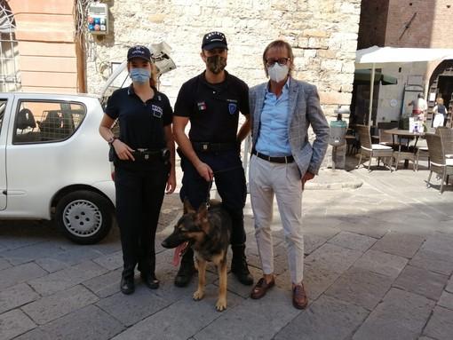 Albenga, nascondono hashish in un'auto abbandonata ma non sfuggono al fiuto del commissario Lupo