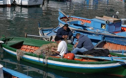 Regione, approvato in Consiglio regionale il piano triennale per la pesca