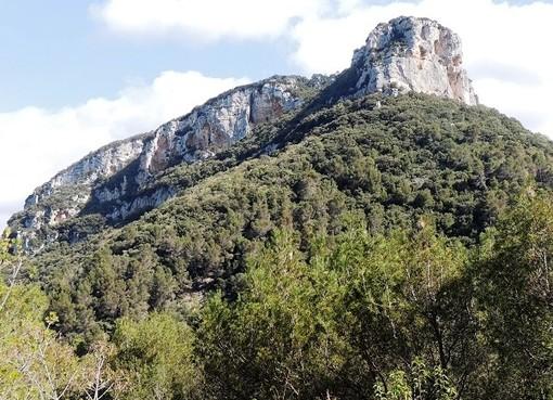 Anche l'Enpa Savona contro la cancellazione di diverse aree protette e del parco del Finalese