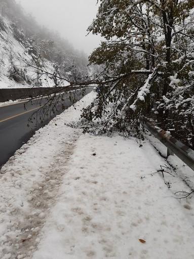 Anas, al lavoro uomini e mezzi per fronteggiare l'emergenza neve