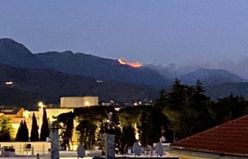 Incendio sulle alture di Arenzano: vigili del fuoco in azione (FOTO)