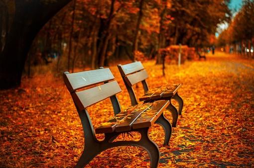 Meteo, arriva l'autunno ma a piccoli passi: temperature in calo. Le previsioni per i prossimi giorni
