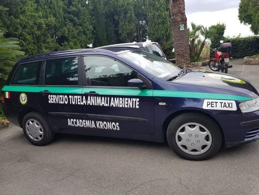 L'Accademia Kronos Onlus cerca volontari operativi per incrementare gli interventi sul territorio
