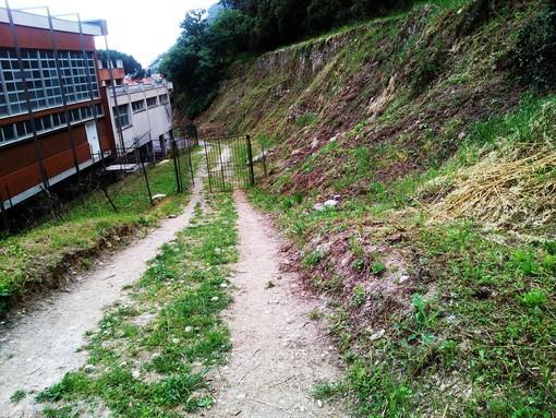 """Un """"patrimonio verde"""" da oltre dodicimila metri quadri attorno alle scuole """"Aycardi-Ghiglieri"""" di Finale Ligure (FOTO e VIDEO)"""