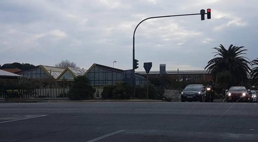 Albenga: all'asta terreni agricoli, azienda e appartamenti di Ascheri