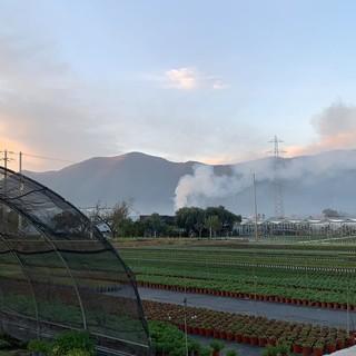 Abbruciamenti: ad Albenga scattano i controlli