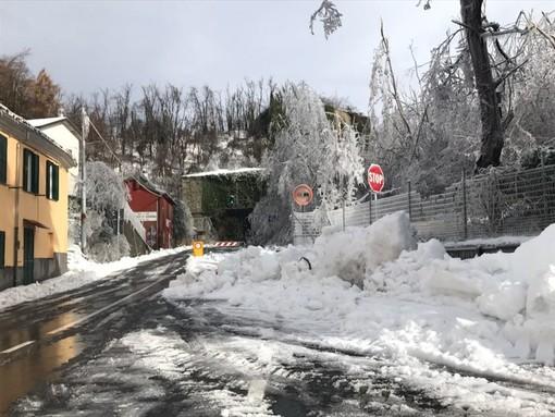 Servizio di manutenzione invernale sulla rete stradale provinciale: oggi la consegna alle ditte per l'avvio del servizio