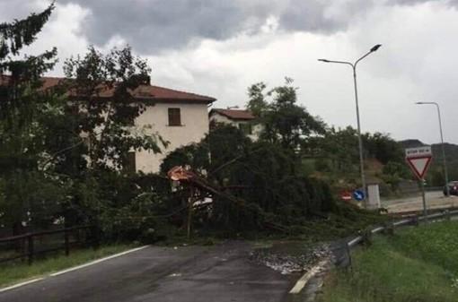 """Tromba d'aria a Piana Crixia, sindaco Tappa: """"Per fortuna nessun ferito, grazie a tutti per l'aiuto"""""""
