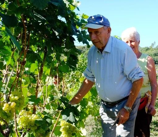 CIA in lutto per la scomparsa di Ettore Vio, tra i primi a lanciare il vino Pigato