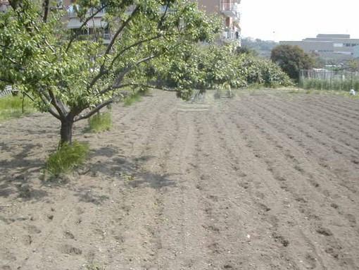 Dalla Regione Liguria altri 3 milioni di euro per il Piano di Sviluppo Rurale