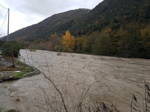 Albenga, nuovo argine del torrente Arroscia: approvato il progetto definitivo
