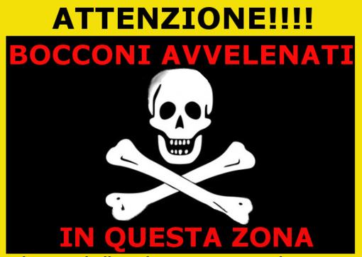 "ENPA lancia l'allarme: ""Veleno a Savona"""